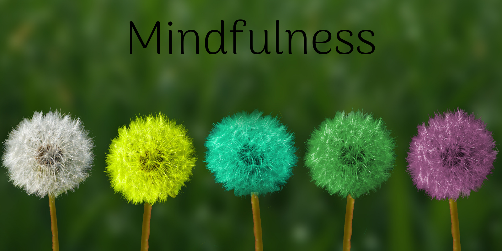 Five Fall Mindful Techniques